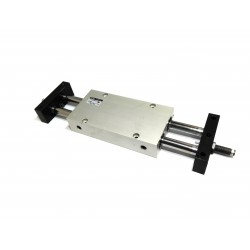 SMC ECDPX2N25-100 - Attuatore Pneumatico a Slitta 25x100mm 10Bar - Sensore Magnetico
