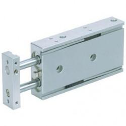 SMC CXSM10-40-Cilindro Guidato F 10mm C 40mm-0.7MPa max-M5x0.8x112mm-Doppia Asta