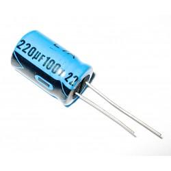 2x Lelon - Condensatore Elettrolitico 220uF 100V